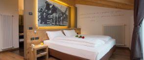 Deluxe Double or Twin Room SASSDEI ACTIVE HOTEL Andalo